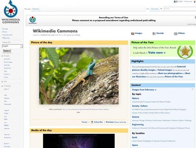 Wikimedia - Bilderdatenbank für lizenzfreie Bilder für Blog und Webseiten