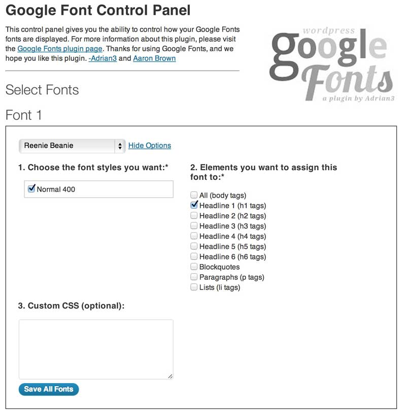 WordPress Plugin Google Font richtig konfigurieren